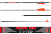 Avalon Tyro Carbon Arrows Set 12